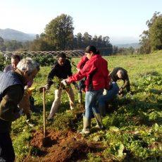 Comienza el curso de agricultura ecológica